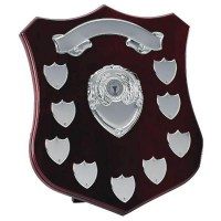 Champion Presentation Shield 30cm