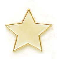 Gold Star Reward Badge