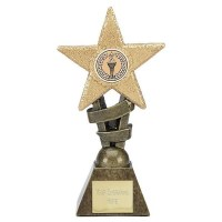 Large Glitter Star Award