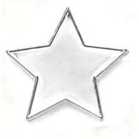 Silver Star Reward Badge